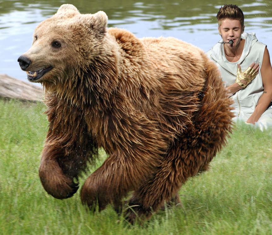 Bieber Brown Bear