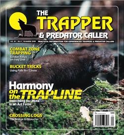 November 2008 issue
